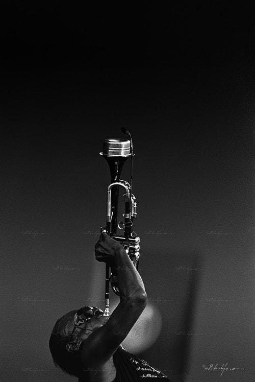 Miles © Shigeru Uchiyama