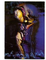 Miles 1982 tour programme